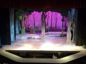 The set of ECC Musical Theatre's production of Into the Woods
